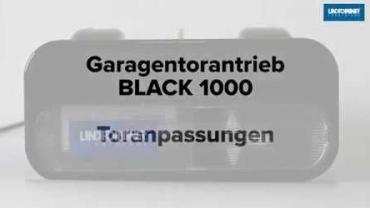 BLACK 1000 | Auswahl Tortyp